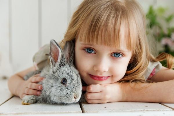 house rabbits need interaction